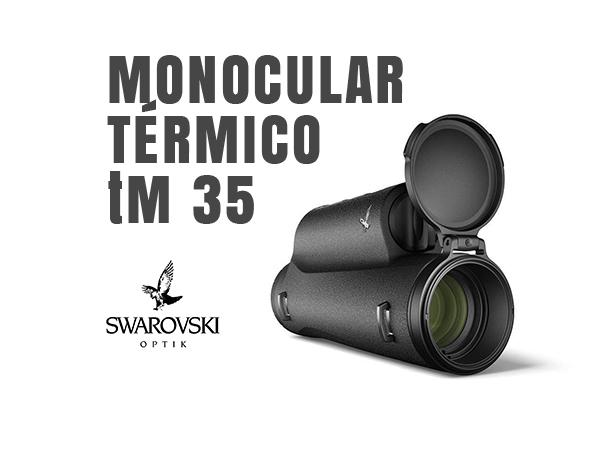 vision termica swarovski