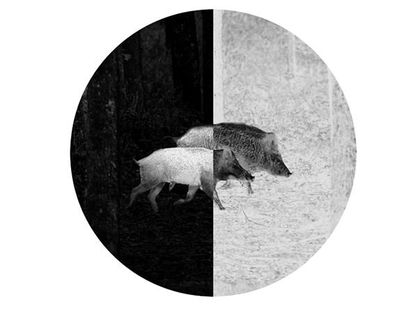caza vision termica